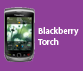 Blackberry-Torch.png